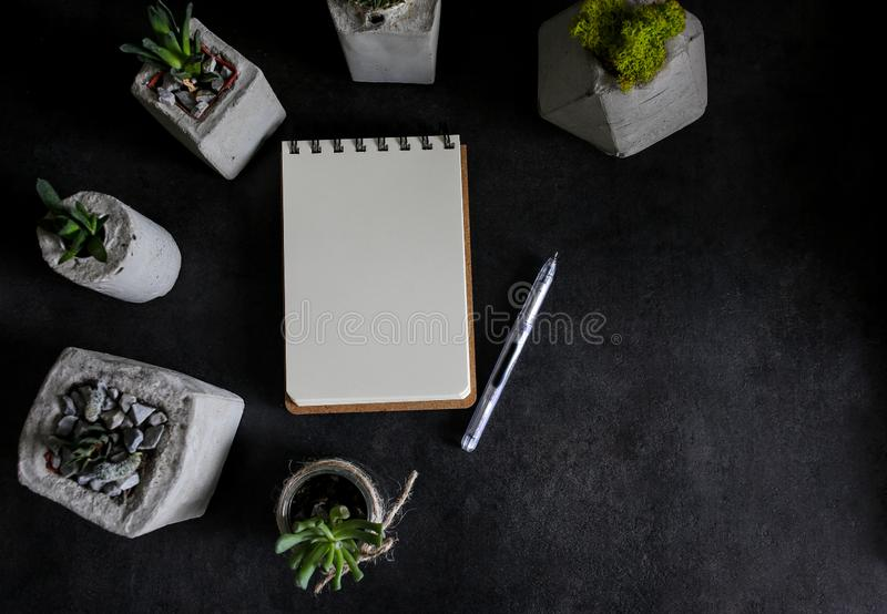 Succulents and notebook stock photo