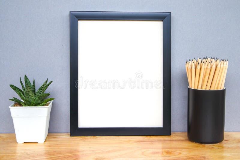 Succulents o cactus en potes concretos sobre el fondo blanco en el estante y la mofa encima de la foto del marco foto de archivo libre de regalías