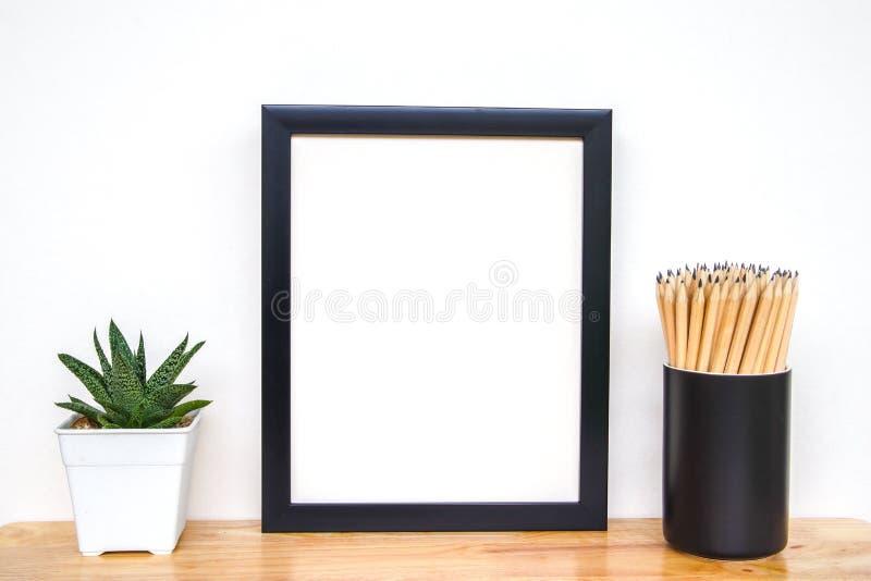 Succulents o cactus en potes concretos sobre el fondo blanco en el estante y la mofa encima de la foto del marco foto de archivo