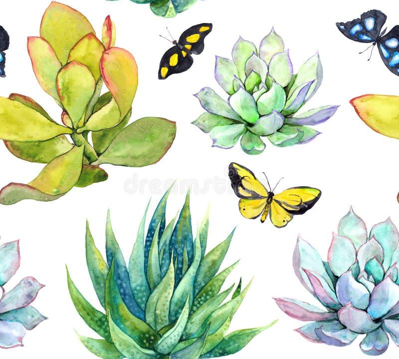 Succulents y mariposas Fondo embaldosado watercolor stock de ilustración