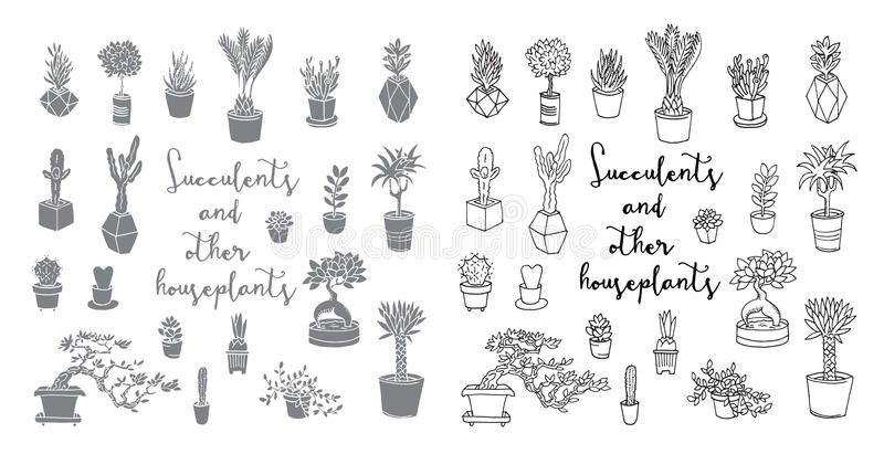 Succulents y otros houseplants libre illustration