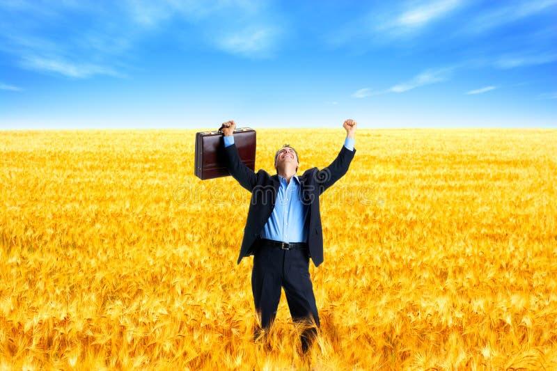 Sucesso de negócio imagem de stock royalty free