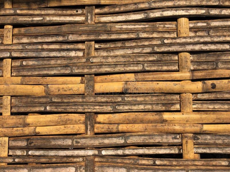 Sucha bambusowa tekstury tła ściana z naturalnymi wzorami dla tapety zdjęcie stock
