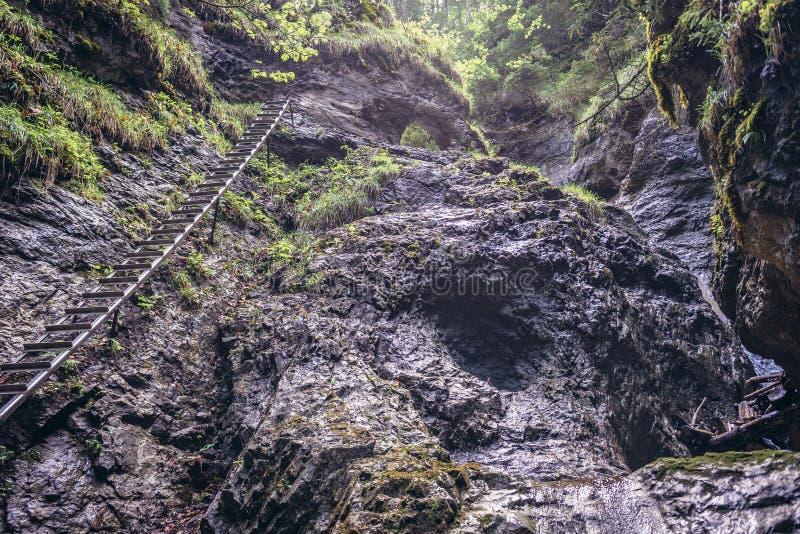 Sucha Bela slinga i slovakiskt paradis royaltyfri foto
