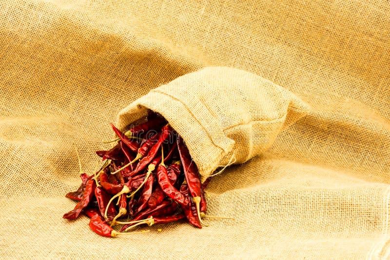 Download Sucha chili czerwień zdjęcie stock. Obraz złożonej z tło - 57661274