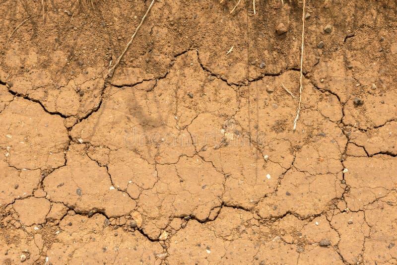 Sucha i krakingowa ziemia - aridity - zdjęcie royalty free
