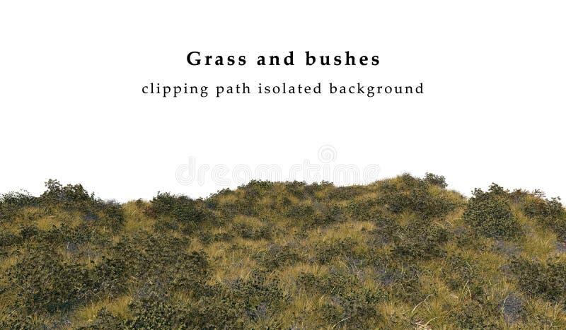 Sucha trawa i krzaki odizolowywający ilustracja wektor