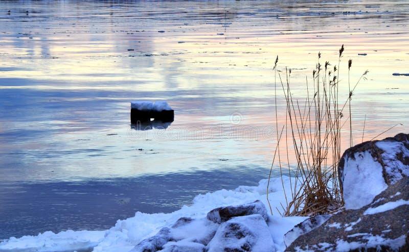 Sucha trawa na skalistym Północnym brzeg zakrywającym z śniegiem obrazy royalty free