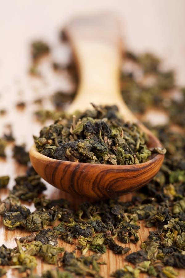 sucha zielona herbata obraz royalty free