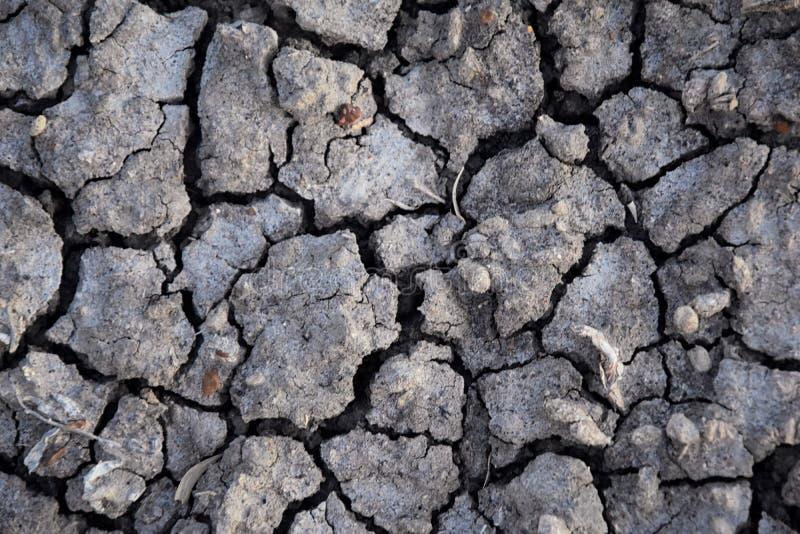 Suchej ziemi abstrakta tło susza Szara sucha ziemia Glebowy tło tło pękająca ziemi Ziemski wzór Glebowa tekstura pęknięcie fotografia stock