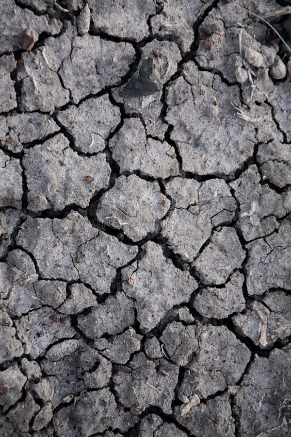 Suchej ziemi abstrakta tło susza Szara sucha ziemia Glebowy tło tło pękająca ziemi Ziemski wzór Glebowa tekstura pęknięcie zdjęcie stock