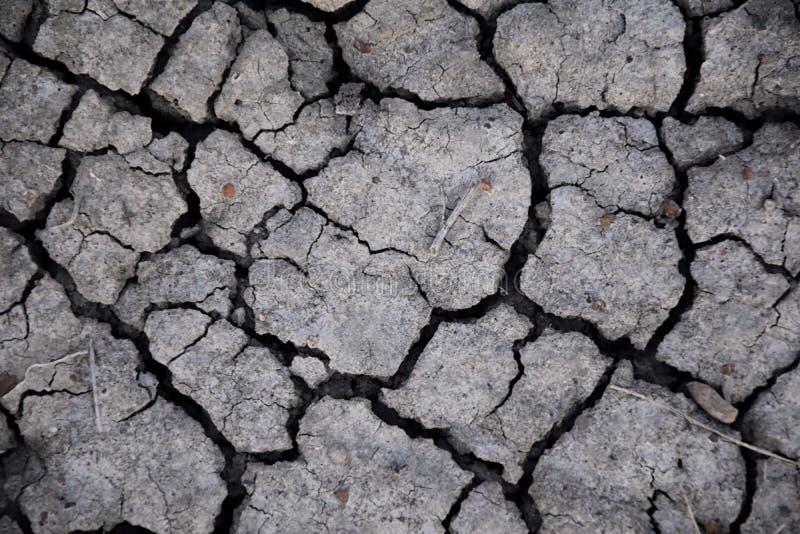 Suchej ziemi abstrakta tło susza Szara sucha ziemia Glebowy tło tło pękająca ziemi Ziemski wzór Glebowa tekstura pęknięcie obrazy royalty free