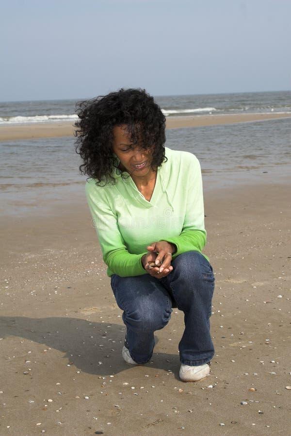 Suchen nach Shells auf dem Strand lizenzfreie stockbilder
