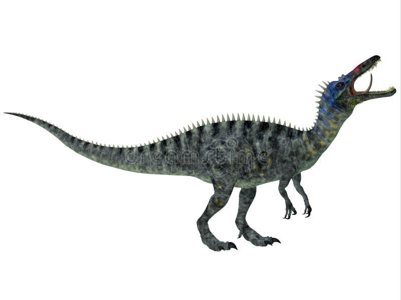 Suchomimus no branco ilustração do vetor