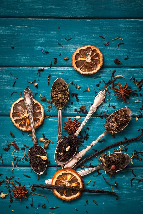 Suchy Herbaciany asortyment fotografia royalty free