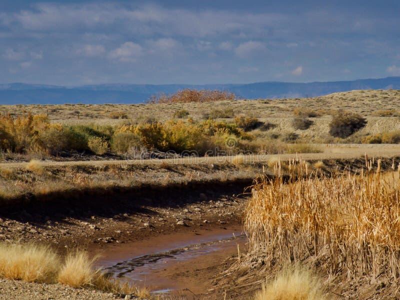 Suchy Kolorado irygacji kanał obraz royalty free