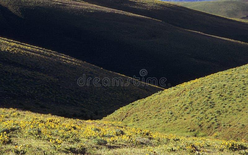 Suchy Ląd Wzgórz Wiosna Obrazy Stock
