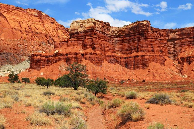 Suchy obmycie i Organowa Rockowa formacja, Capitol Rafowy park narodowy, Utah fotografia stock