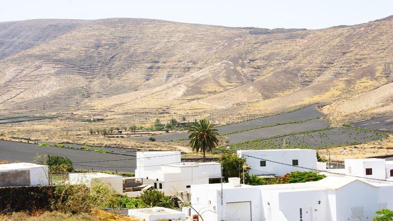 Suchy powulkaniczny krajobraz w Lanzarote obraz royalty free