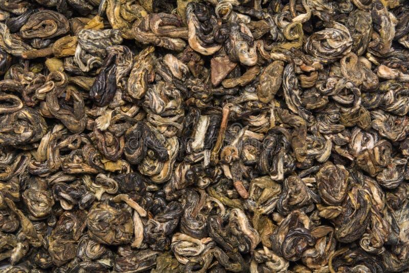 Suchy zielonej herbaty Bilochun ślimaczek odizolowywający na białym tle Odgórny widok od above obrazy royalty free