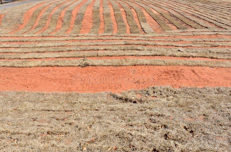 Suciedad roja de una granja del césped de Oklahoma en invierno fotografía de archivo libre de regalías