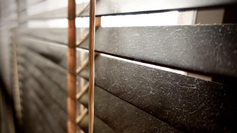 Sucio en los puntos del polvo horizontales en el primer de madera de las persianas de la ventana no bueno para sano, si limpíelo foto de archivo