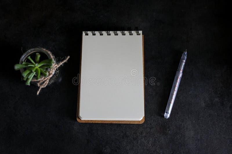 Suckulent och anteckningsbok royaltyfri foto