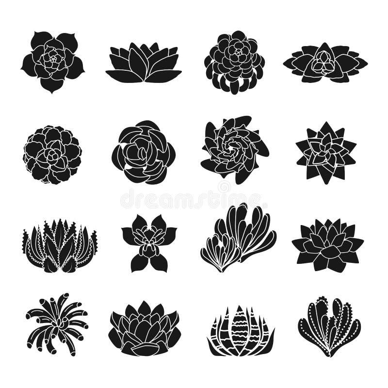 Suckulent symbolsuppsättning, enkel stil vektor illustrationer
