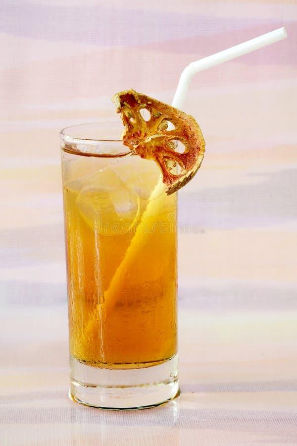 Suco congelado de Bael. fotos de stock royalty free