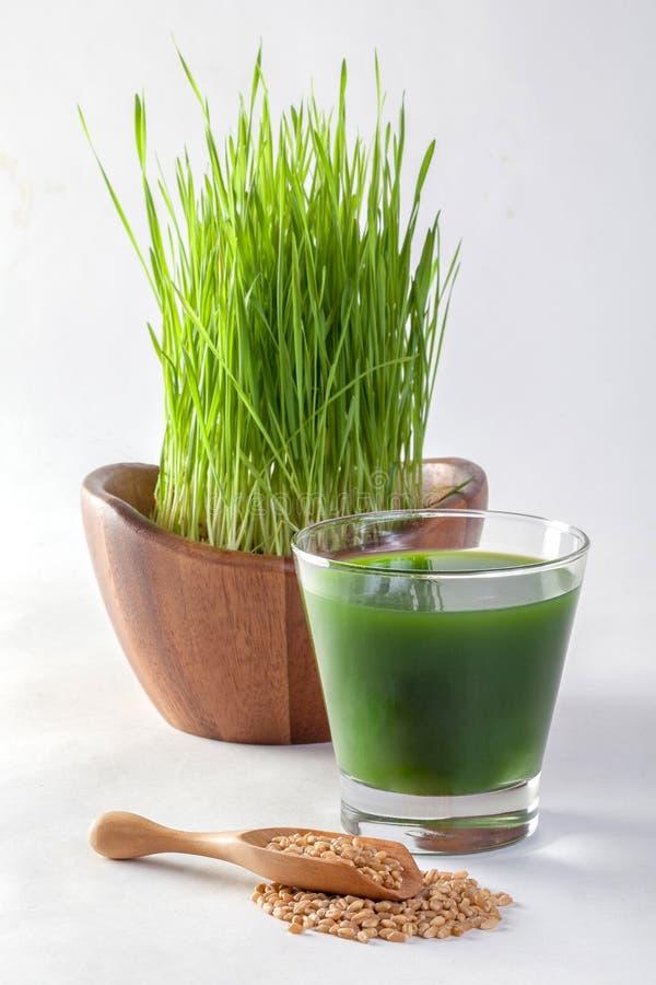 Suco da grama do trigo imagens de stock royalty free