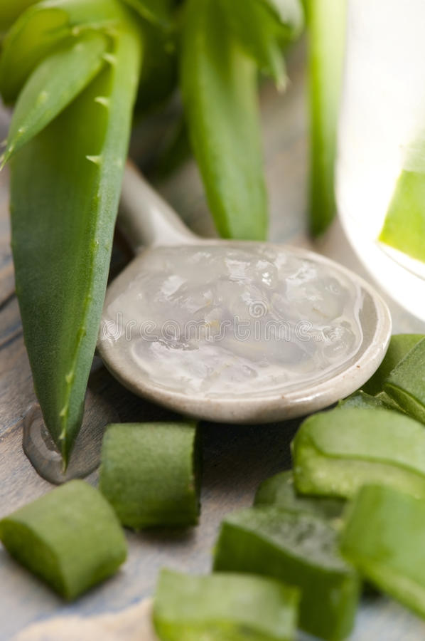 Suco de vera do aloés com folhas frescas foto de stock royalty free