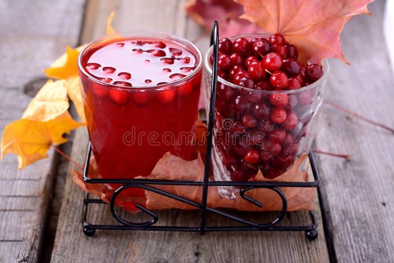 Suco e bagas do Lingonberry foto de stock royalty free