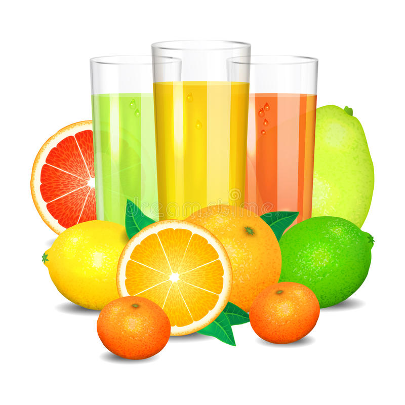 Suco e frutos frescos do citrino Limões, laranjas e cais ilustração stock