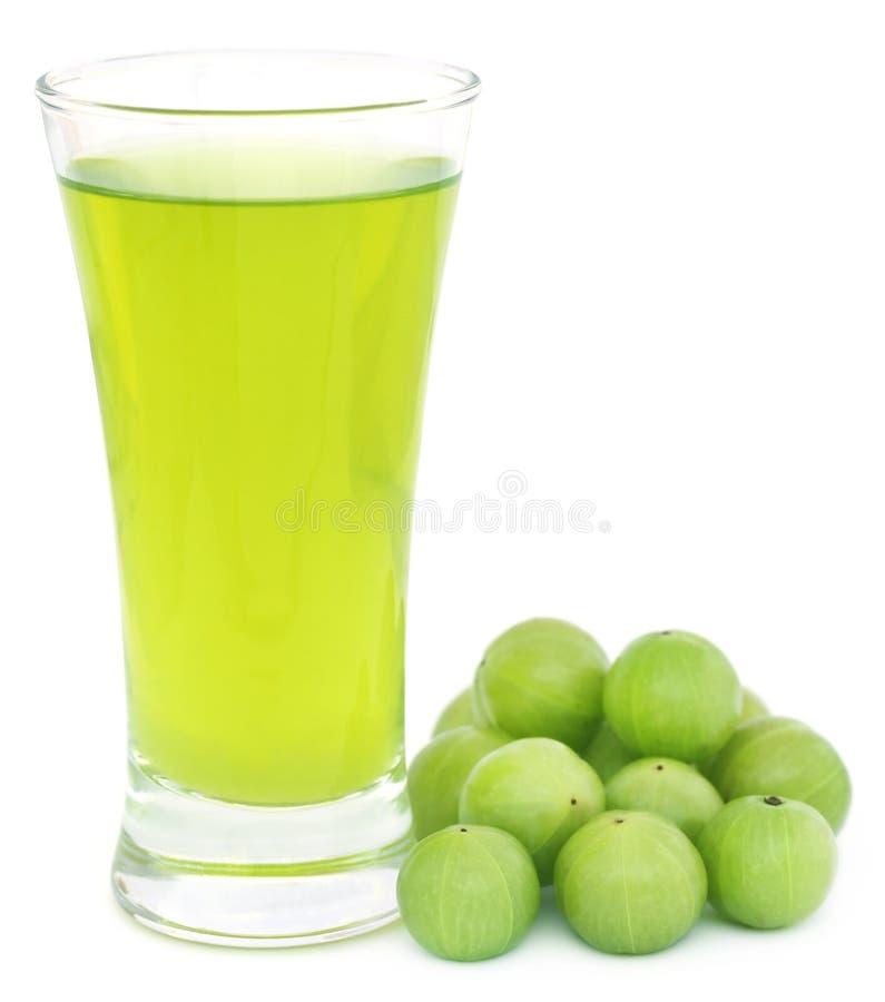 Suco erval do amla com frutos frescos imagem de stock