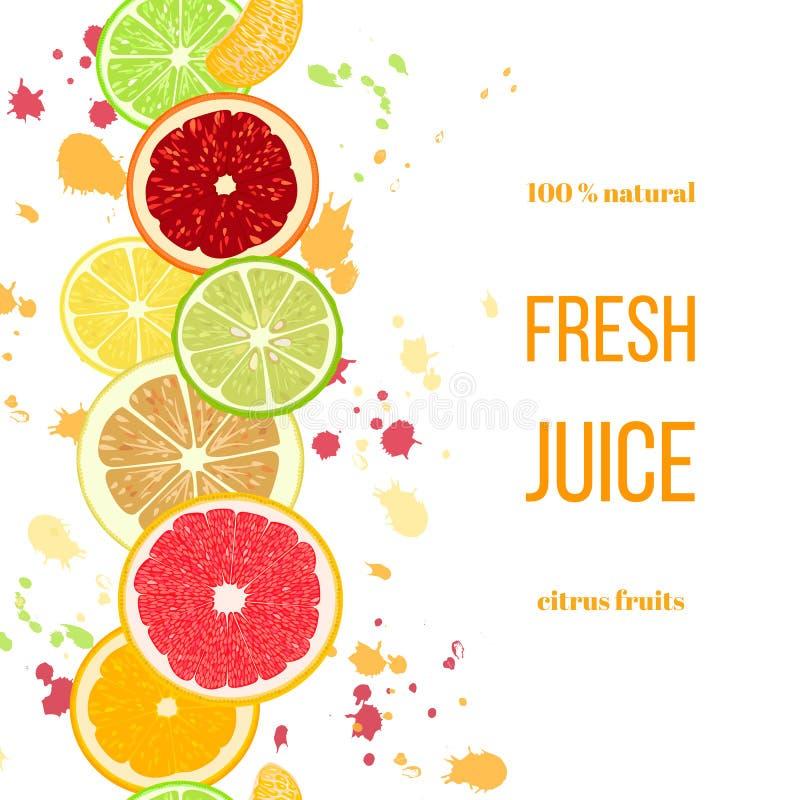 Suco fresco das citrinas A bergamota, limão, toranja, cal, o mandarino, pomelo, laranja, laranja pigmentada com espirra ilustração do vetor