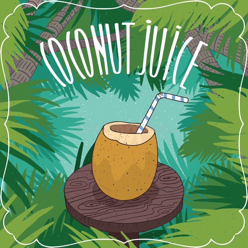 Suco fresco do coco no fruto ou na porca do coco ilustração royalty free