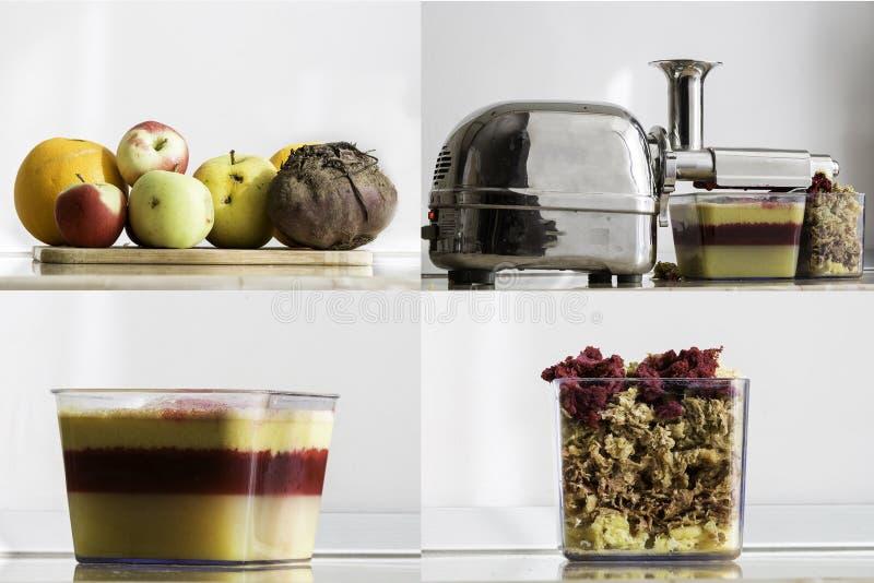 Suco orgânico fresco que mostra as camadas das frutas e legumes e da polpa restante foto de stock royalty free