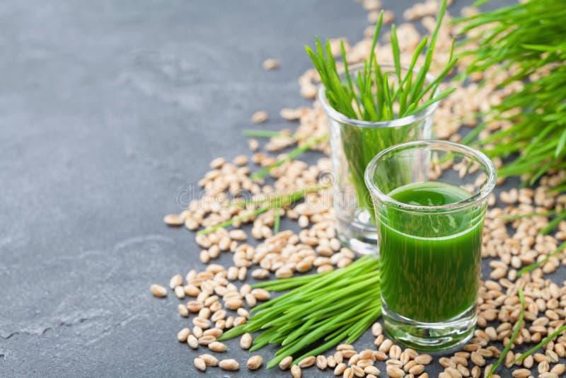 Suco orgânico verde da grama do trigo Bebida da manhã Conceito de Superfood imagem de stock