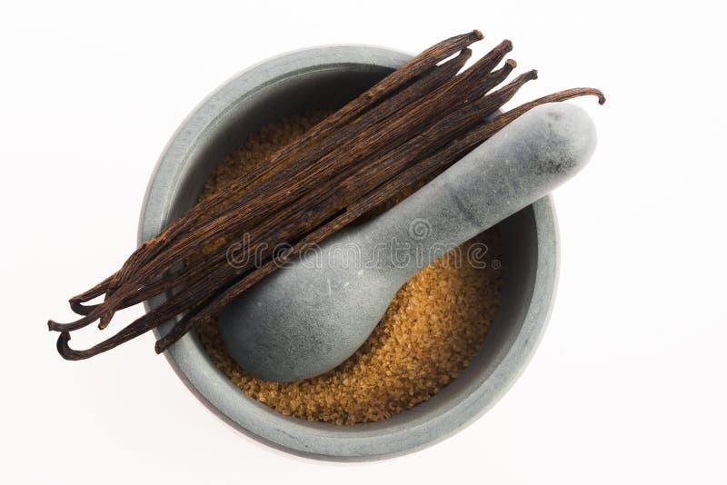 Sucre et gousses de vanille de vanille de Brown en mortier images libres de droits