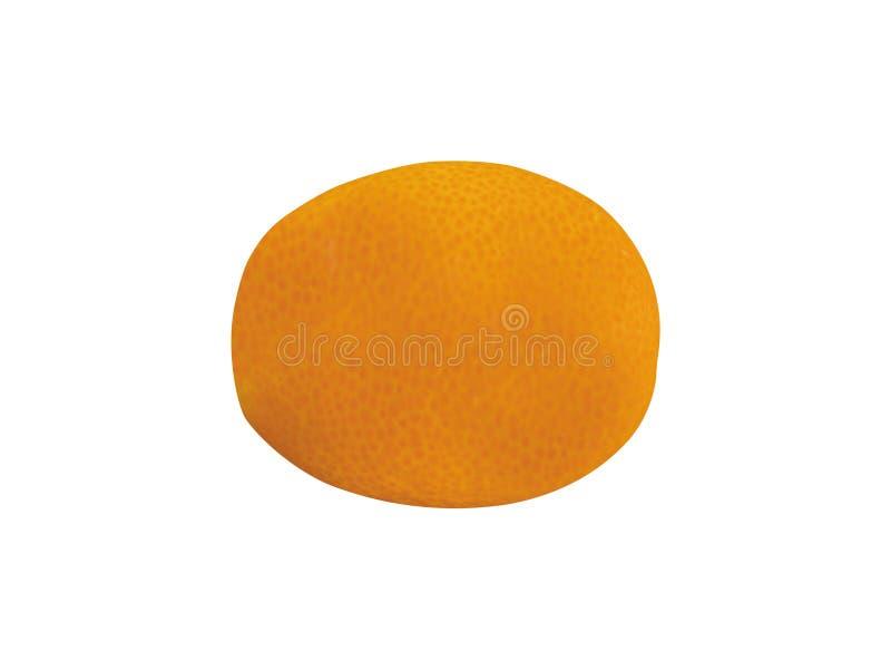 Suculento maduro do Kumquat isolado fotografia de stock