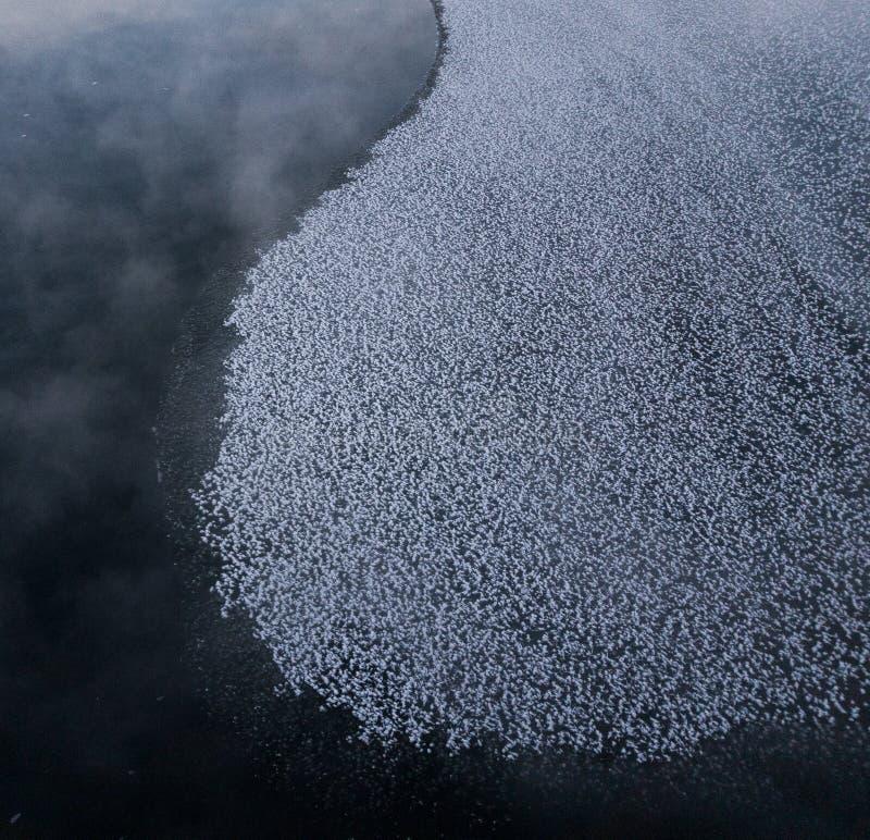 Sud de ressemblance de formatio de glace et côte ouest de la Finlande photo stock