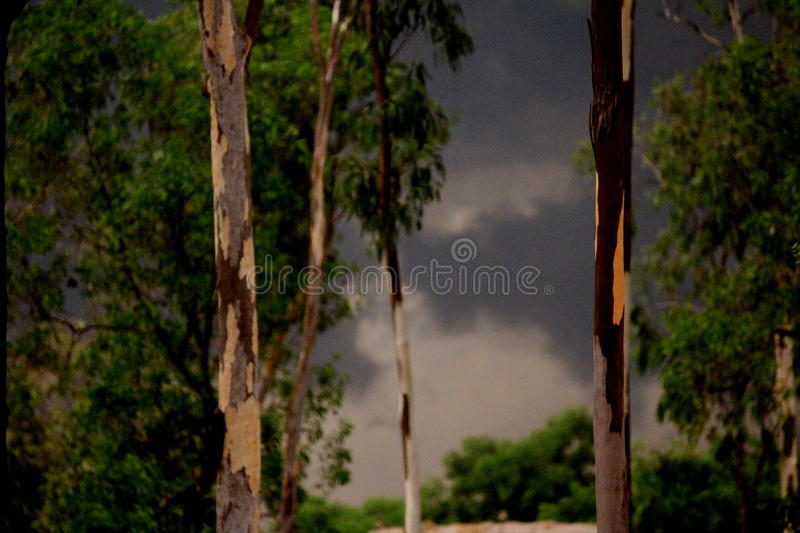 Sudden storm! royalty free stock image