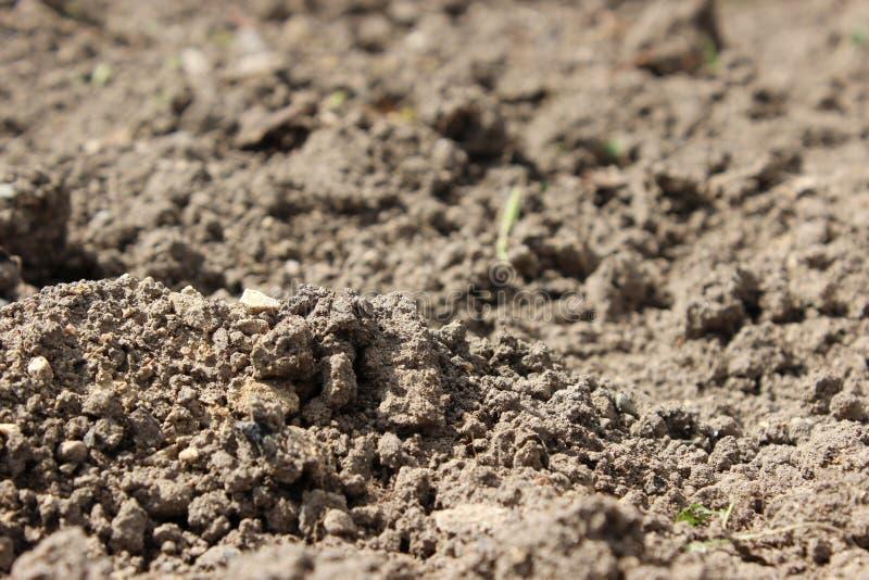 Suddig fertil jord för bakgrund arkivfoton