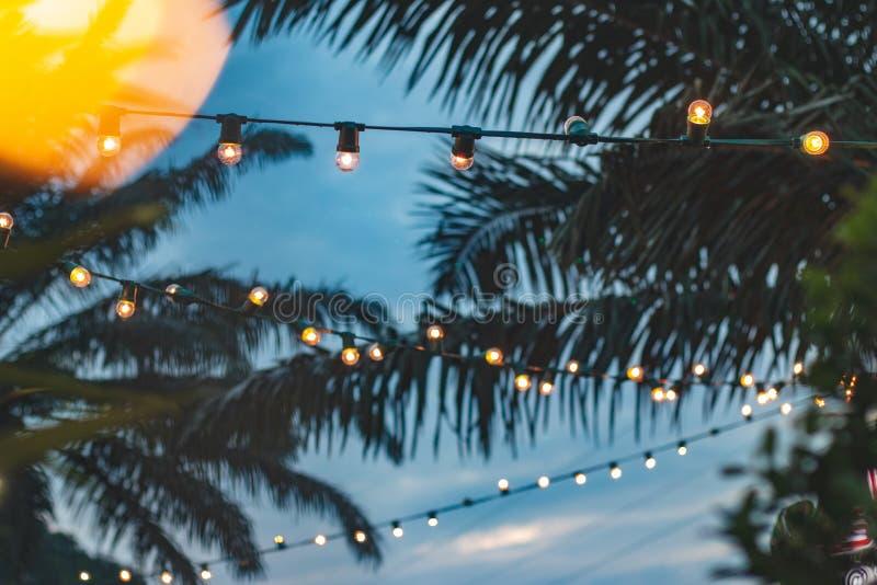 Suddig ljus bokeh med kokosnötpalmträdbakgrund royaltyfri fotografi