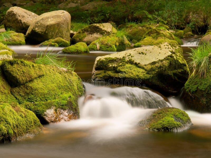 Suddiga forsar av höstbergfloden, stora mossiga stenblock blockerar vatten i skummande rörelse arkivbild