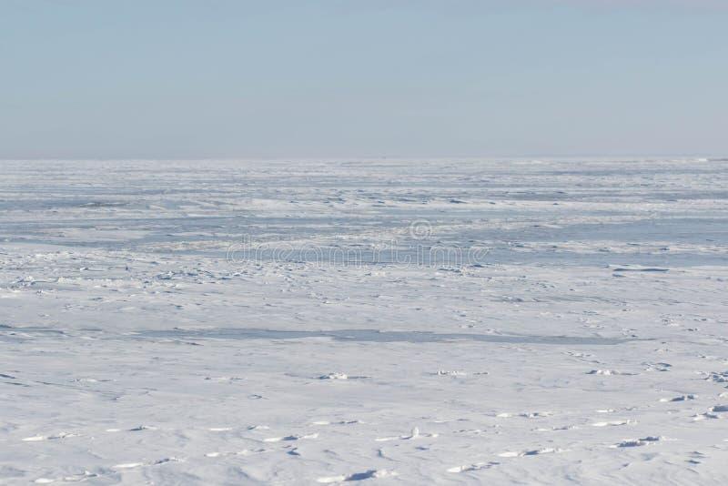 Suddighet för vintersolnedgångbakgrund royaltyfri foto