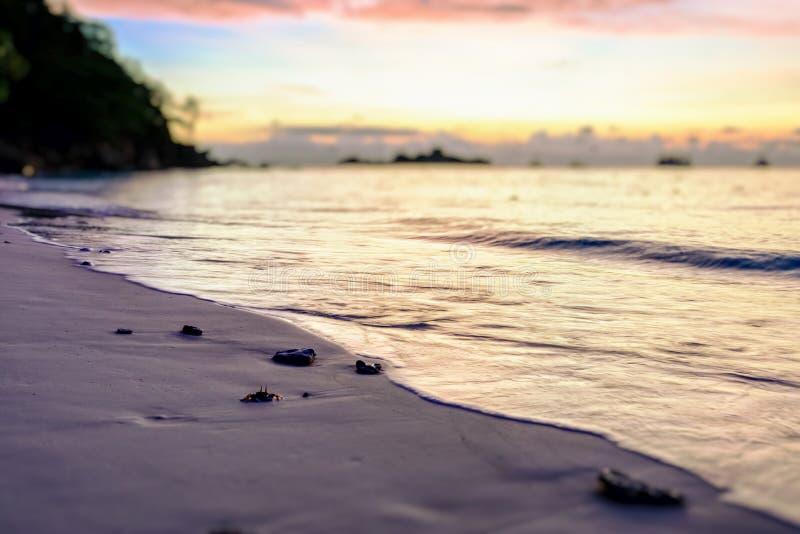 SuddighetsLutande-förskjutning soluppgång på stranden arkivfoto