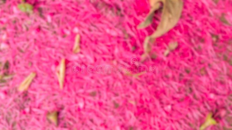 Suddigt av blomman royaltyfri bild