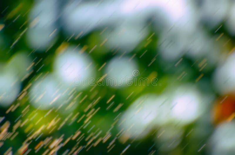 Suddigt sommarregn som faller över en naturlig bakgrund av gröna sidor och mjuka fokusbokehljus Naturlig defocused gräsplan royaltyfri fotografi