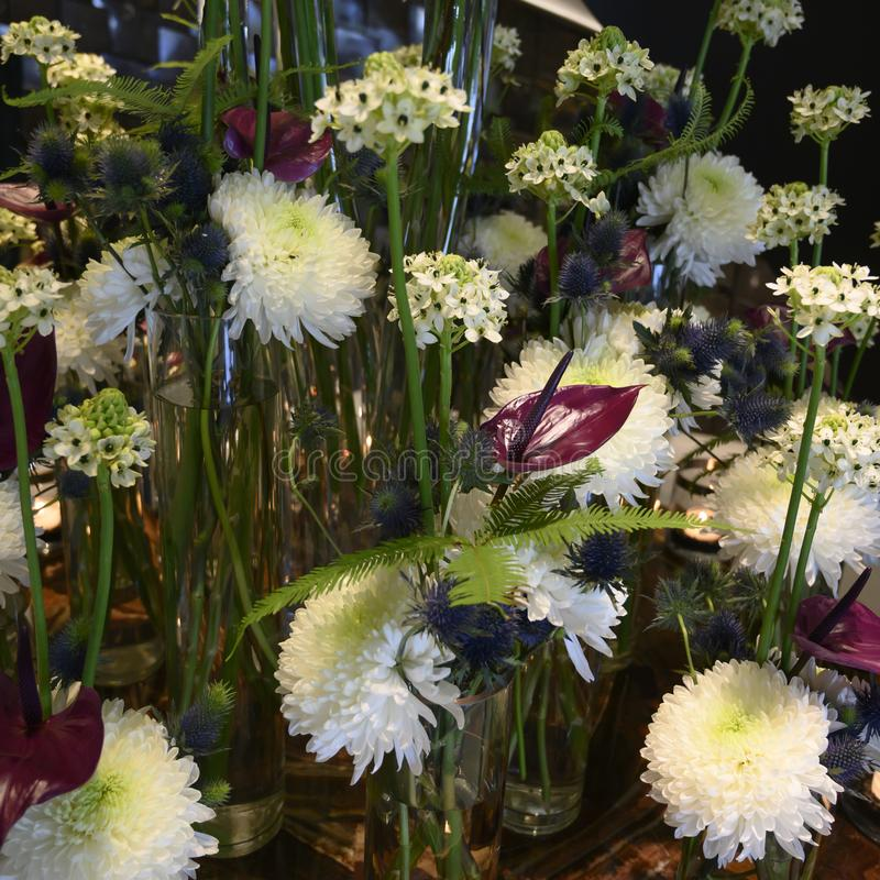 Sueño blanco de la flor del invierno con el crisantemo, estrella de la flor de Belén, Anturia, helecho, cardo, centro de flores h foto de archivo